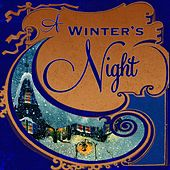 A Winter's Night, Vol. 1 de Various Artists