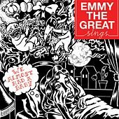 We Almost Had A Baby by Emmy the Great
