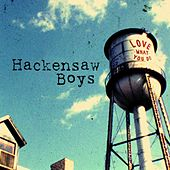Love What You Do by The Hackensaw Boys