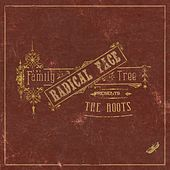 The Family Tree: The Roots van Radical Face