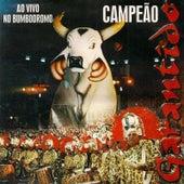 Garantido 1999 (Ao Vivo) de Boi Bumbá Garantido
