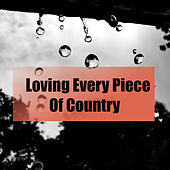 Loving Every Piece Of Country von Various Artists