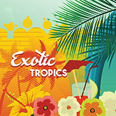 Exotic Tropics – Beach Music, Ibiza Lounge, Relax Under Palms, Sounds of Sea, Beach Party, Drink Bar, Hot Riviera, Holiday Chill Out Music von Ibiza Chill Out