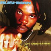 My Meditation by Bushman