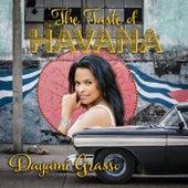 The Taste of Havanna by Dayami Grasso