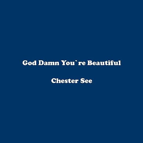 God Damn You're Beautiful by Chester See