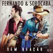 Sem Reação de Fernando & Sorocaba