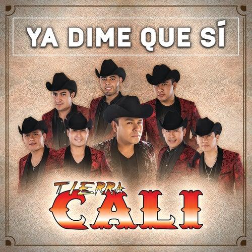 Ya Dime Que Sí by Tierra Cali