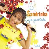 Sandrinha e a Garotada, Vol. 5 de Sandrinha