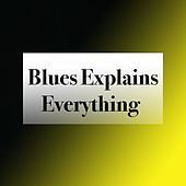 Blues Explains Everything de Various Artists
