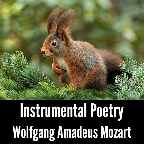 Instrumental Poetry: Wolfgang Amadeus Mozart by Wolfgang Amadeus Mozart