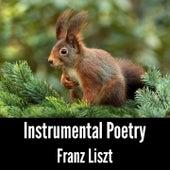 Instrumental Poetry: Franz Liszt by Franz Liszt