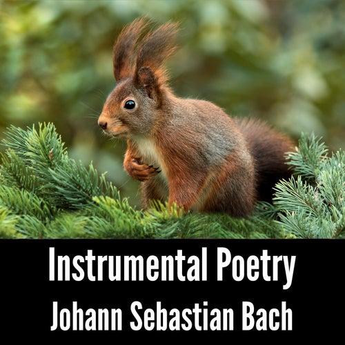 Instrumental Poetry: Johann Sebastian Bach by Johann Sebastian Bach