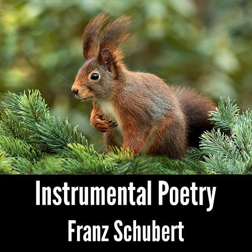 Instrumental Poetry: Franz Schubert by Franz Schubert