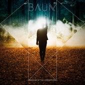 Kingdom of the Upright Man de BAUM