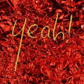 Yeah! (Live 2007-2014) de Wallis Bird