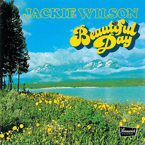 Beautiful Day by Jackie Wilson