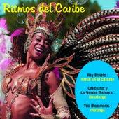Ritmos del Caribe de Various Artists