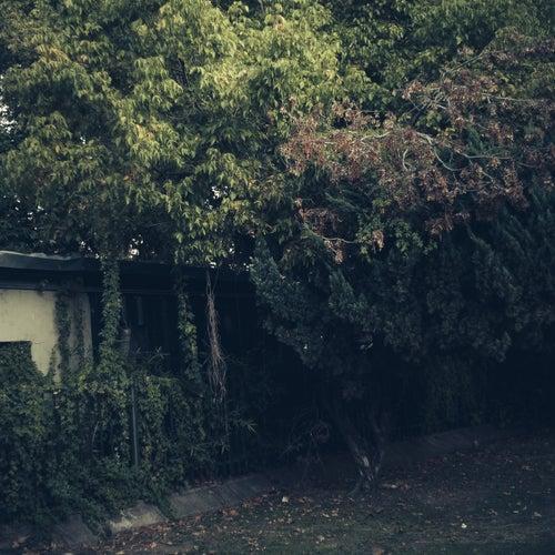 I Ran The Zoo by Joris Voorn