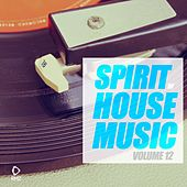 Spirit of House Music, Vol. 12 de Various Artists