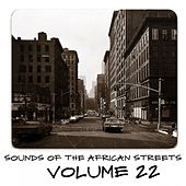 Sounds of the African Streets, Vol. 22 von Various Artists