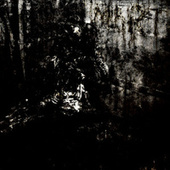 MoRT by Blut Aus Nord
