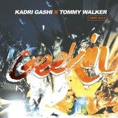 Geekin (feat. Wan) by Tommy Walker