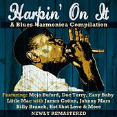 Harpin' on It-A Blues Harmonica Anthology de Various Artists