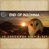 End of Insomnia: 30 Songs for Deep Sleep, Calming Dreams, Cure for Trouble Sleeping, Relaxation Time, Peaceful Night, Natural Sleep Aid by Various Artists