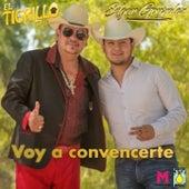 Voy A Convencerte by El Tigrillo Palma