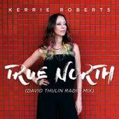 True North (David Thulin Radio Mix) by Kerrie Roberts