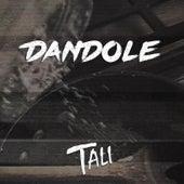 Dándole de Tali (Latin)