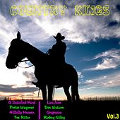 Country Kings, Vol. 3 by Various Artists