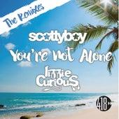 You're Not Alone (The Remixes) de Lizzie Curious