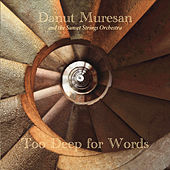 Too Deep for Words by Danut Muresan