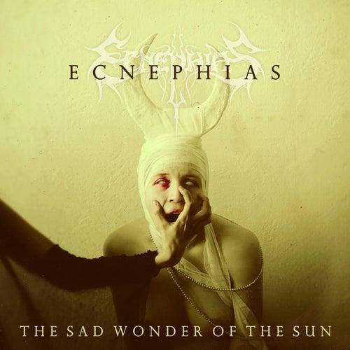 The Sad Wonder of the Sun by Ecnephias