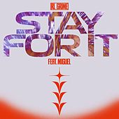 Stay For It (feat. Miguel) von RL Grime