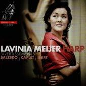 Divertissements von Lavinia Meijer