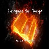 Lenguas de Fuego by Various Artists