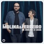 He vuelto a casa de Molina Molina