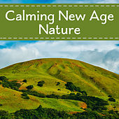 Calming New Age Nature – Sounds to Relax Your Mind, Soft Music, New Age Relaxation, Healing Nature Waves de Sounds Of Nature