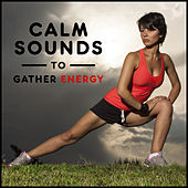 Calm Sounds to Gather Energy – Relaxing New Age Music, Meditation Sounds, Peaceful Waves, Zen Garden de Zen Meditation and Natural White Noise and New Age Deep Massage