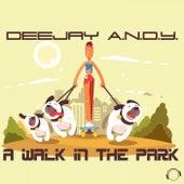 A Walk in the Park von Dj Andy