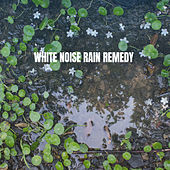 White Noise Rain Remedy by Various Artists