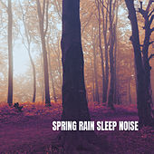 Spring Rain Sleep Noise by Various Artists