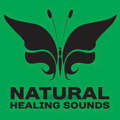 Natural Healing Sounds – Nature Sounds to Calm Down, Peaceful Music, Waves of Calmness de Nature Sounds Artists