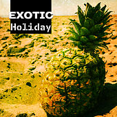 Exotic Holiday – Ibiza Coast, Beach Chill, Sea, Sand, Summer Chill Out Music, Total Relaxation, Ibiza Lounge, Trip to Paradise von Chill Out