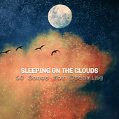 Sleeping on the Clouds: 50 Songs for Dreaming, Nap Time, Relaxation, Meditation, Cure for Insomnia, Falling Asleep at Night by Various Artists