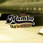 Mambo Que Sonaron by Andy