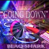 Going Down (feat. Born Divine) by Blaq Shark